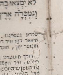 """שערה בודדת נמצאה בתוך מחזור ליום כפור, דפוס מיץ תקע""""ז (1817)"""