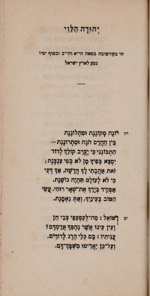 רבי יהודה1